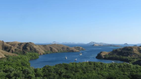 Kemajuan Pariwisata Indonesia Tahun 2020